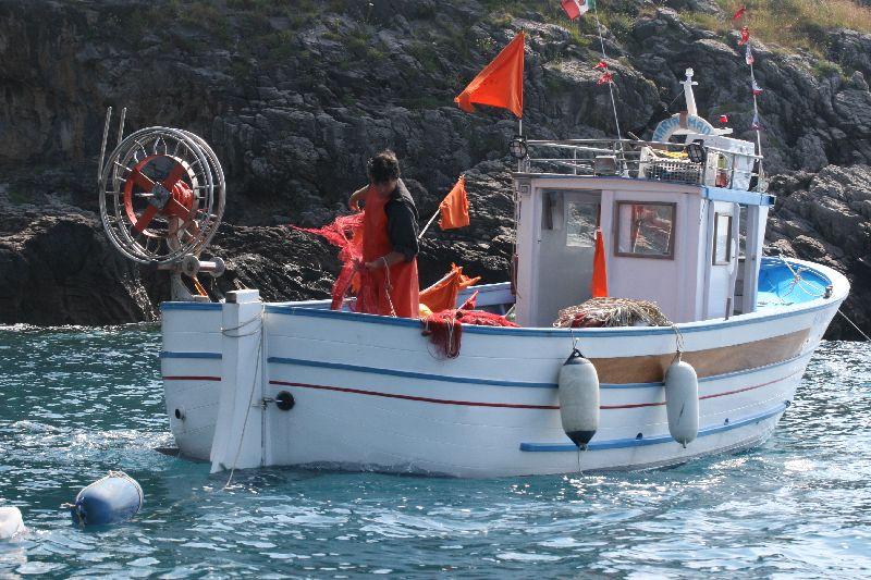 vira da pescatore