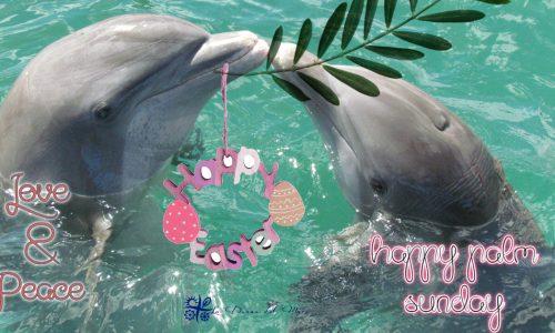 Happy Palm Sunday * Buona Domenica delle Palme