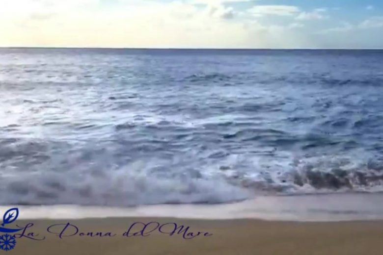 How do the waves move?